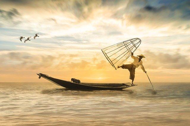 Zaradenie rýb do detského jedálnička